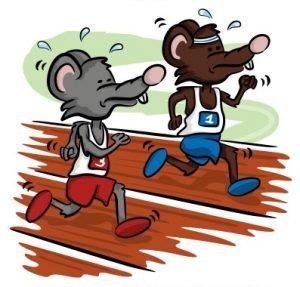 rat-race