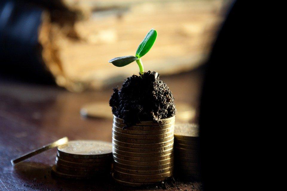 grow-wealth